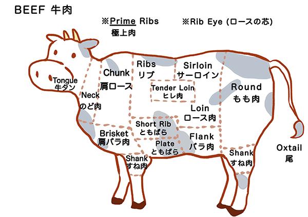 牛肉の部位の英語