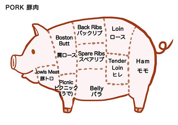 豚肉の部位の英語