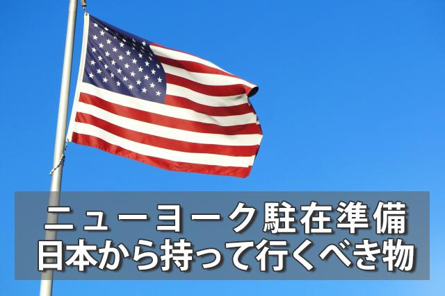 ニューヨーク(郊外)駐在準備:日本から持って行くべき持ち物10選