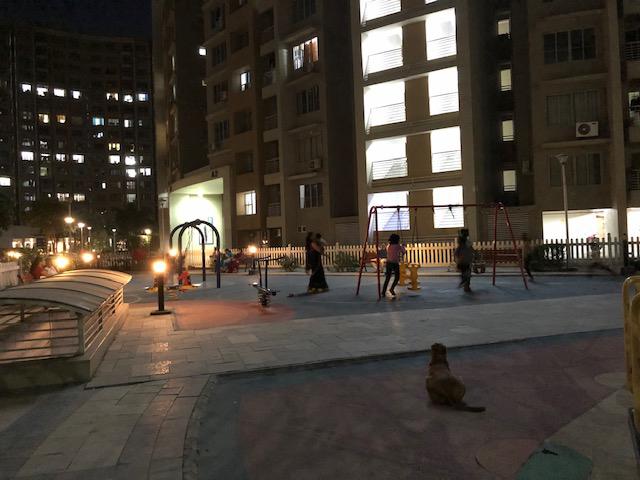 アーメダバードでは19時頃から公園で遊ぶ